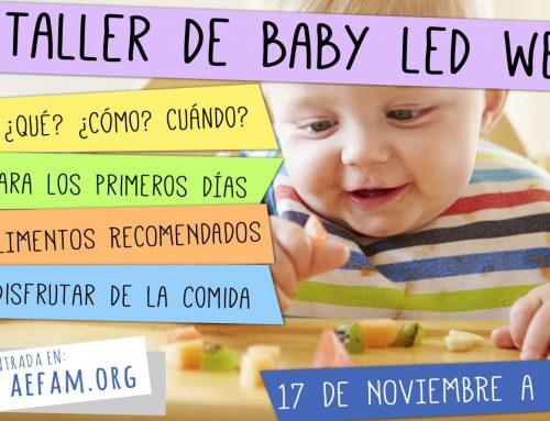 Taller Baby-Led Weaning (BLW): 17 de Noviembre a las 10:45h en Ohana (Chiclana)